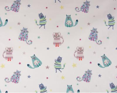 Gatos Casper 2
