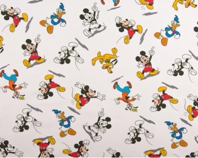 Digital Mickey e Companhia 1