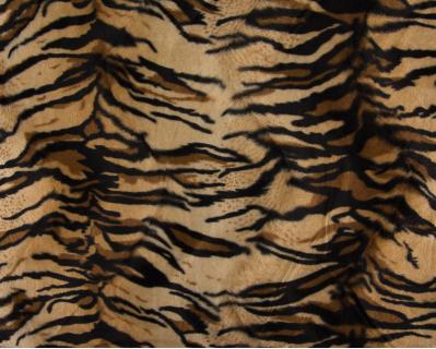Imitação de Pêlo Tigre 1