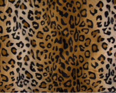 Imitação de Pêlo Leopardo 1
