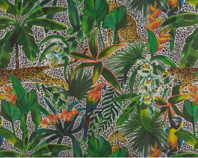 Panamá Animais e Plantas Tropicais 1