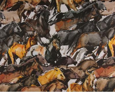 Panamá Cavalos Graz 1